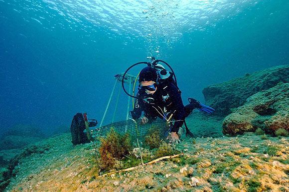 Akdeniz ve Ege'nin dibi bozkır gibi 2