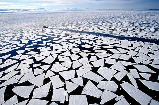 Antartika buzulları altında yaşam 5