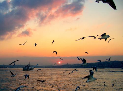 Bir sevdadır İstanbul 1