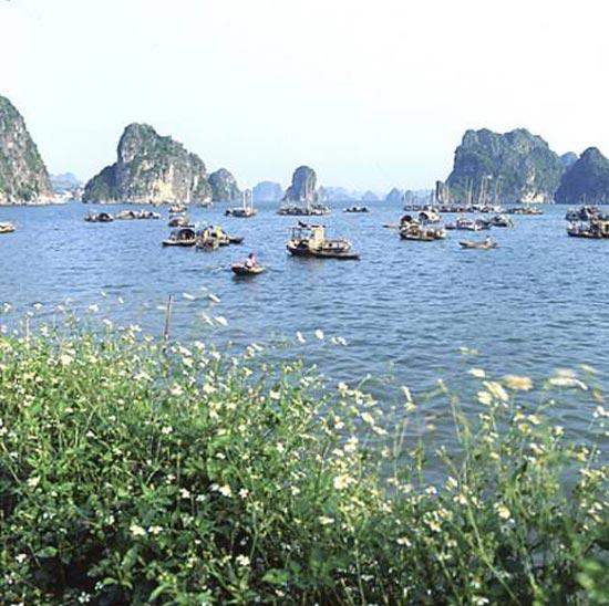 Vietnam'da 'saklı cennet' 8