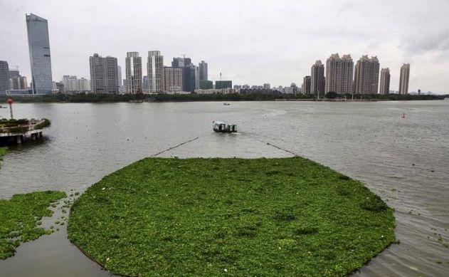 Endüstriyel kirlilik dünya sularını tehdit ediyor 7