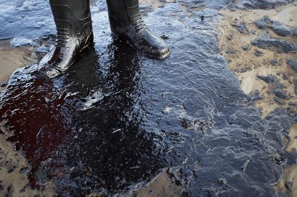 21 bin galon petrol okyanusa sızdı 2