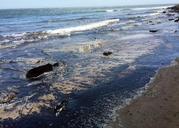 21 bin galon petrol okyanusa sızdı 5