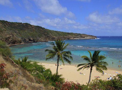 İşte Lost adası 4