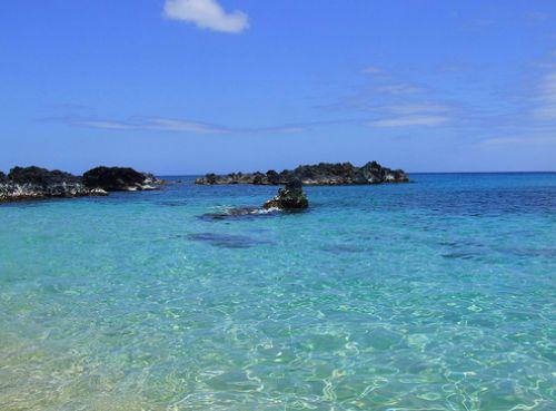 İşte Lost adası 6