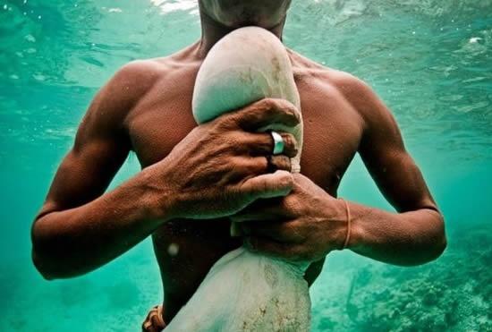 Denizde yaşayan insanlar: Bajaular 14