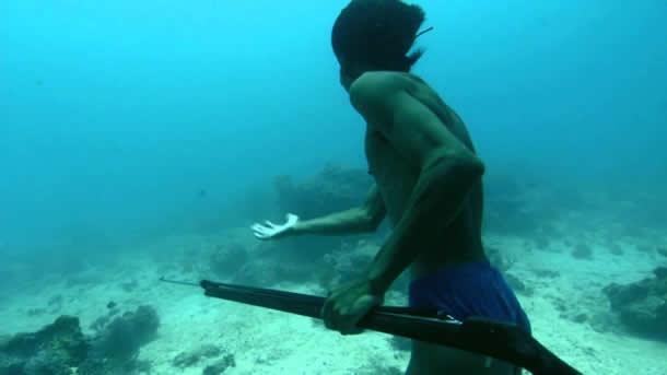 Denizde yaşayan insanlar: Bajaular 8