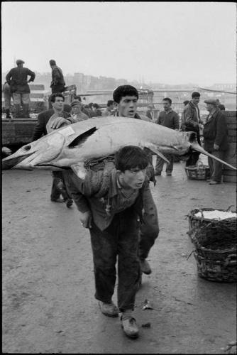 Balık dolu siyah beyaz İstanbul 12
