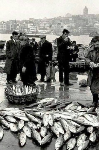 Balık dolu siyah beyaz İstanbul 21