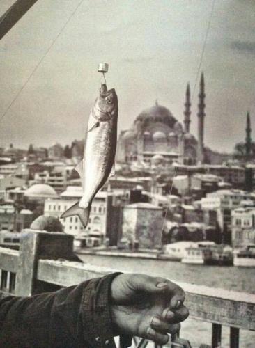 Balık dolu siyah beyaz İstanbul 27