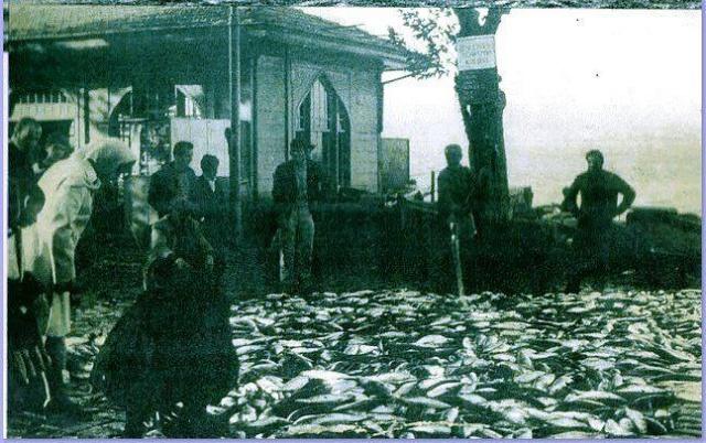 Balık dolu siyah beyaz İstanbul 32
