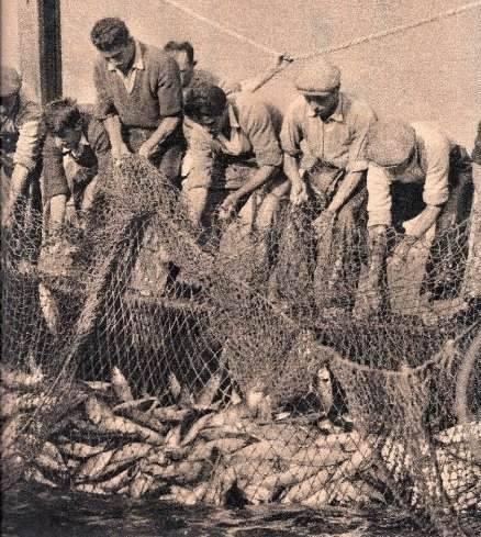 Balık dolu siyah beyaz İstanbul 40