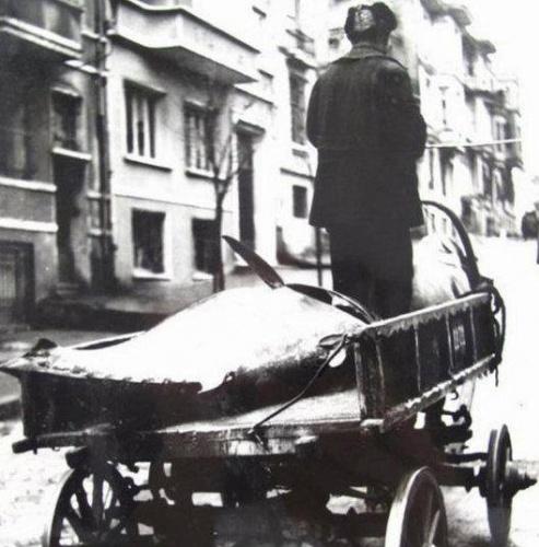 Balık dolu siyah beyaz İstanbul 42