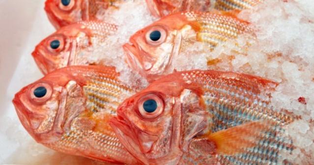Türkiye'de denemesi gereken en lezzetli 10 balık 4