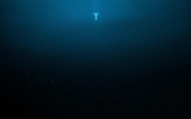 Denize girmeden önce iki kere düşünün 14