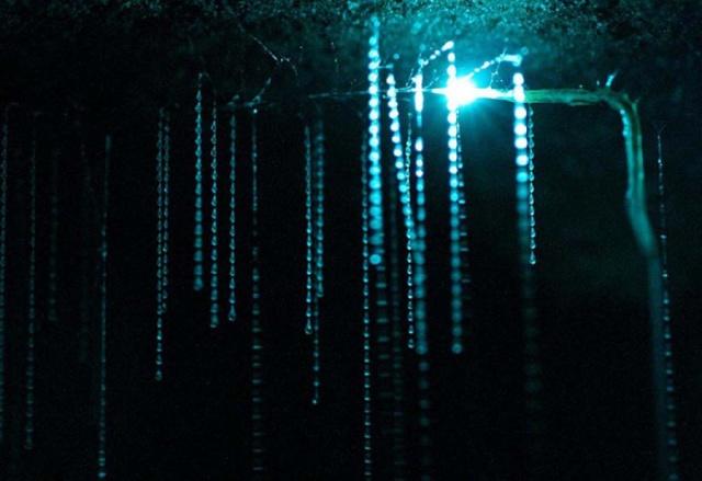 Bir başka masal diyarı; Yıldız Kurdu Mağarası 7