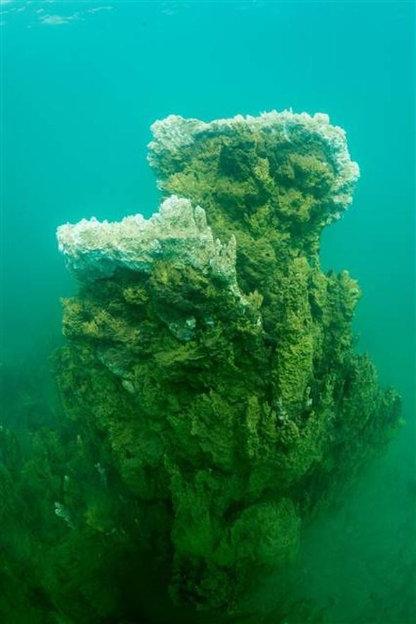 Van Gölü'nde mikrobiyalit alan 10