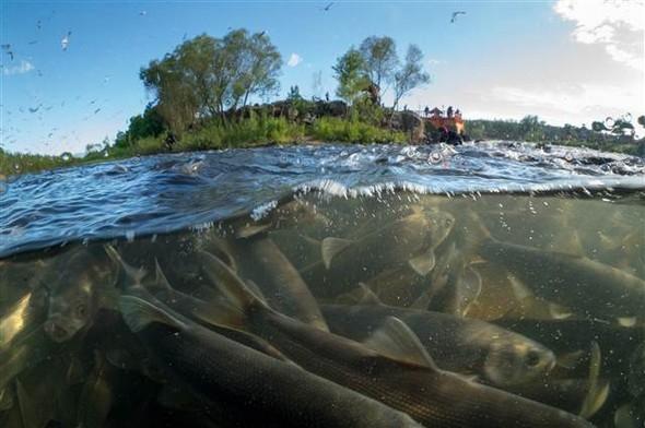Van Gölü'nde mikrobiyalit alan 5