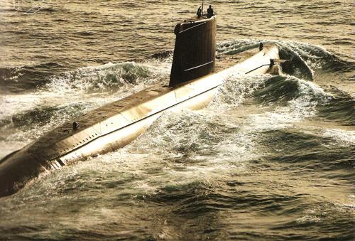 Denizaltı fotoğrafları 10