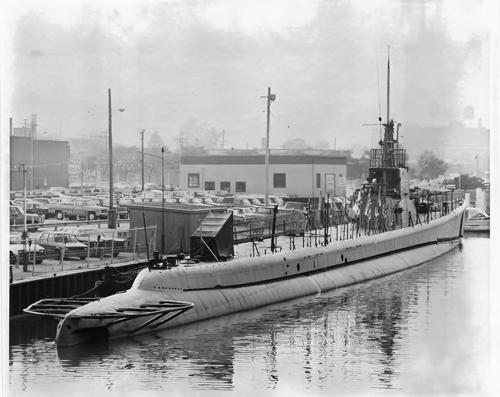 Denizaltı fotoğrafları 11