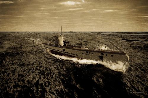 Denizaltı fotoğrafları 16