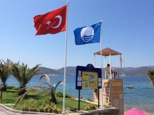 İstanbul'un mavi bayraklı plajları