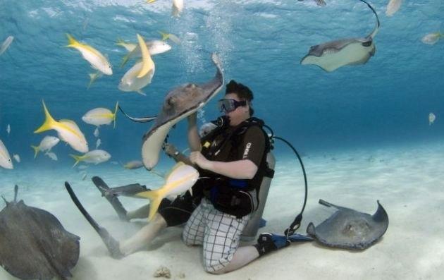Her şey vatozlarla yüzmek için 11