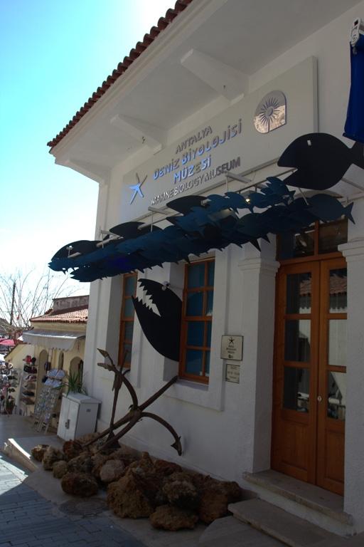 Antalya Deniz Biyolojisi Müzesi 1