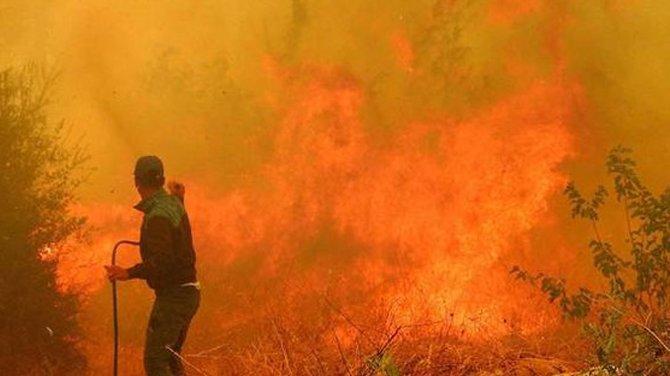 Turizm cennetindeki yangın kontrol altına alındı