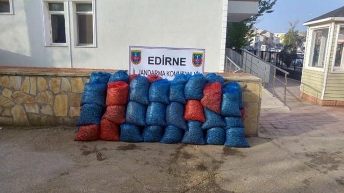 Edirne'de kaçak deniz patlıcanı ve midyeler yakalandı