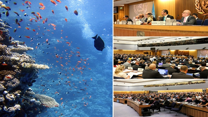 Deniz Çevre Koruma Komitesi, Londra'da toplandı!