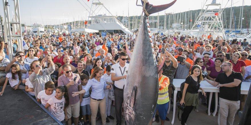 Seferihisar'da balık turnuvası başlıyor