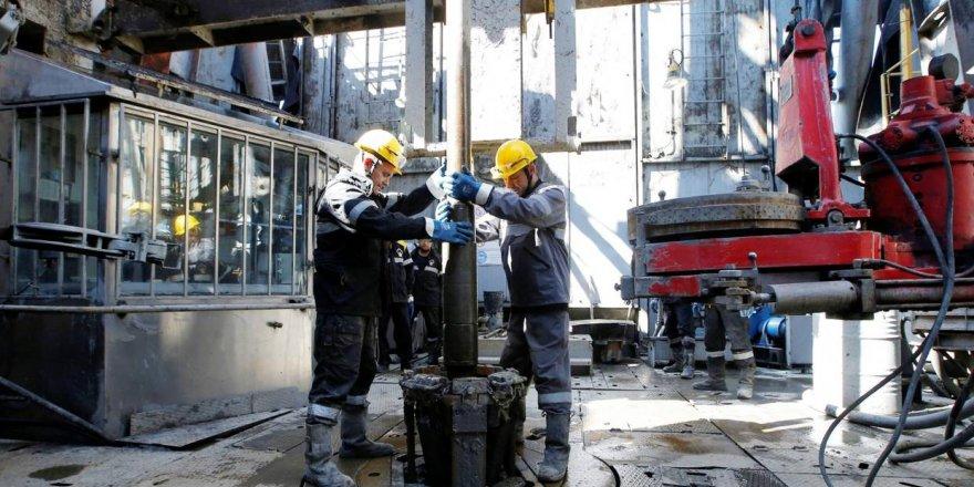 Rosneft, Mısır doğalgazına ortak oldu