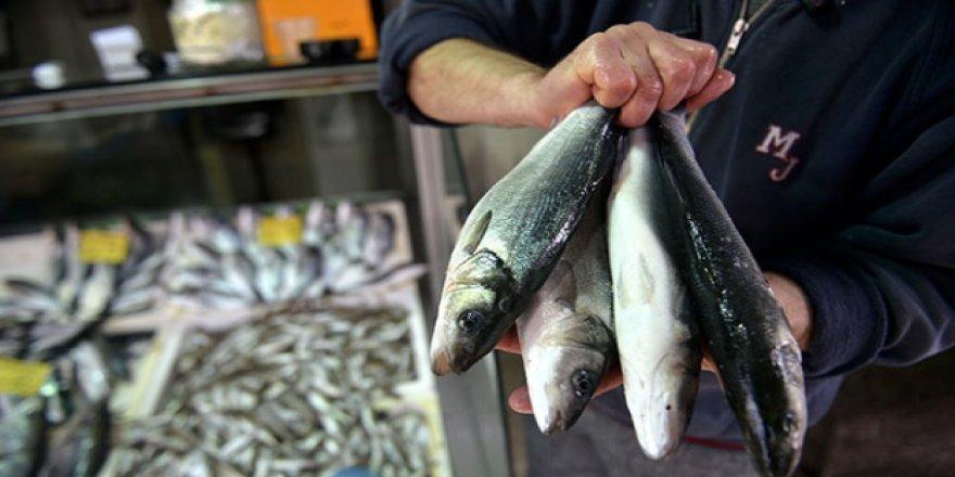 Havalar soğudu tezgahlar balıkla doldu