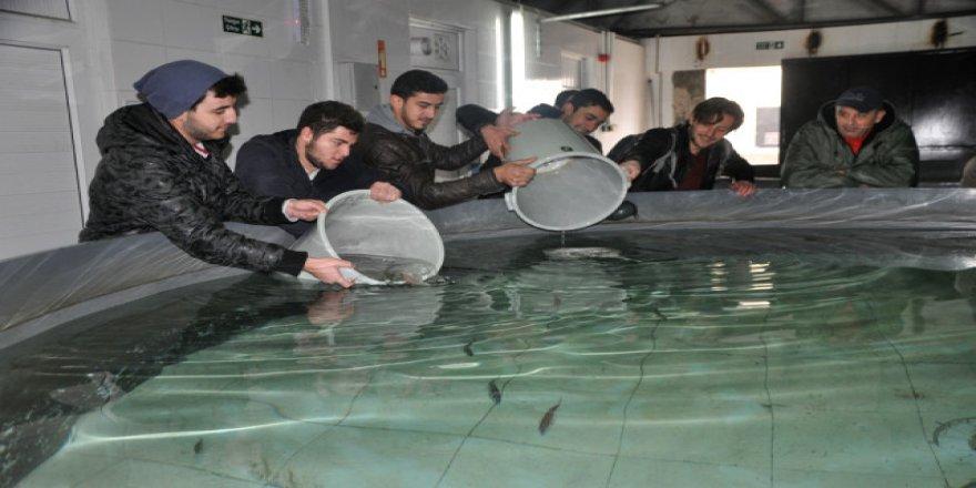Su ürünleri öğrencilerine uygulamalı eğitim