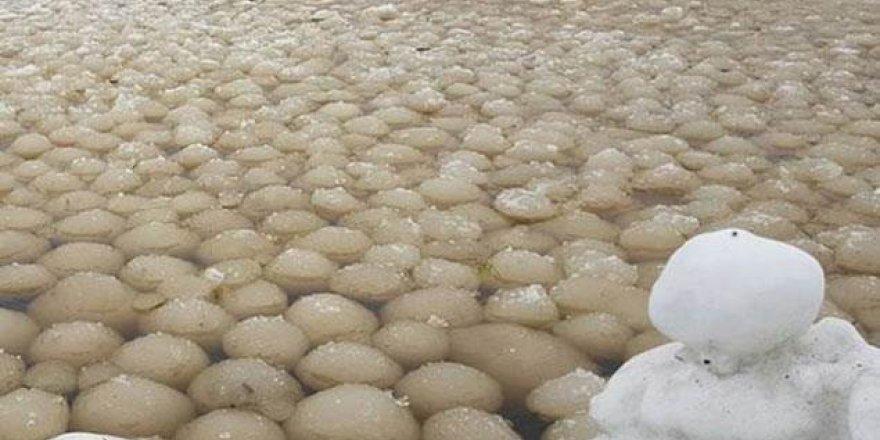 Kıyıya vuran gizemli buz topları korkuttu