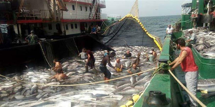 Karadenizli balıkçılar rotalarını okyanusa çevirdi