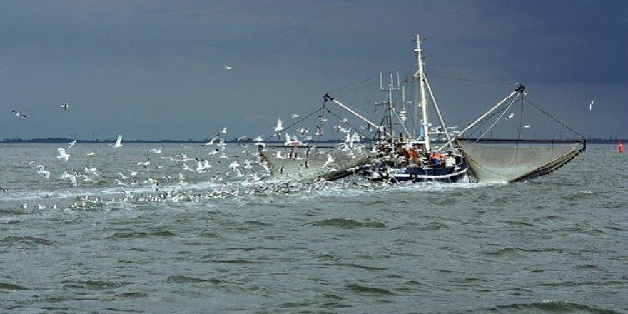 41 balıkçı gemisine avcılıktan çıkma desteği