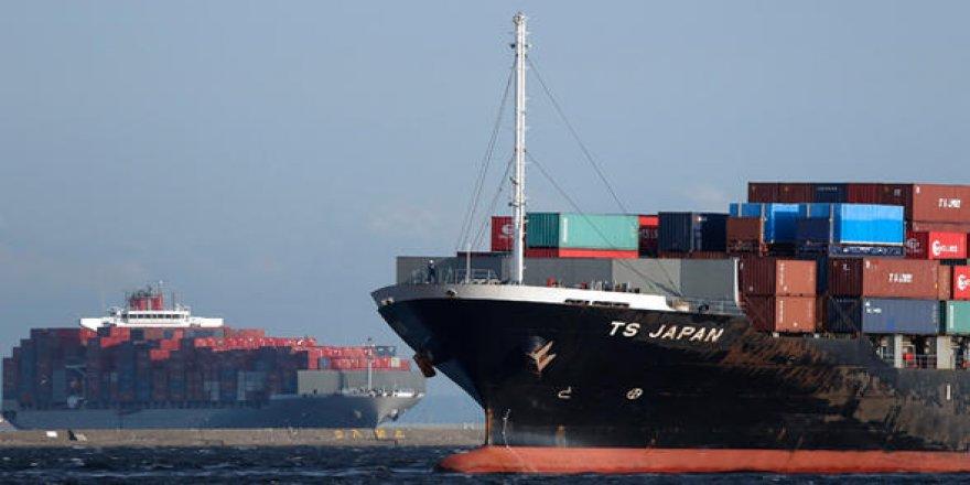Böcek krizi: 3 geminin limana girmesi engellendi