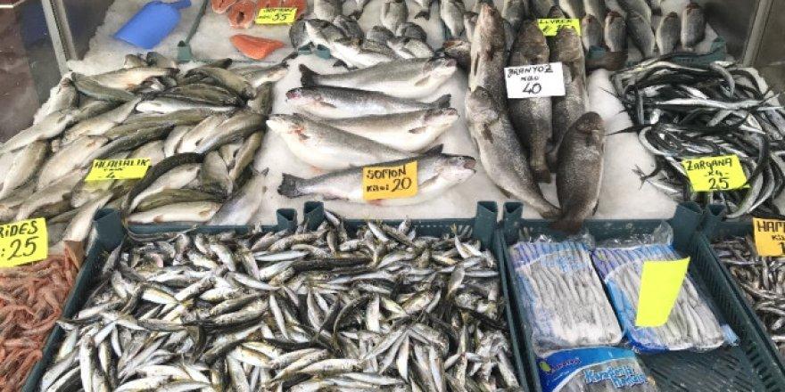 Zamlar balık fiyatlarını uçurdu