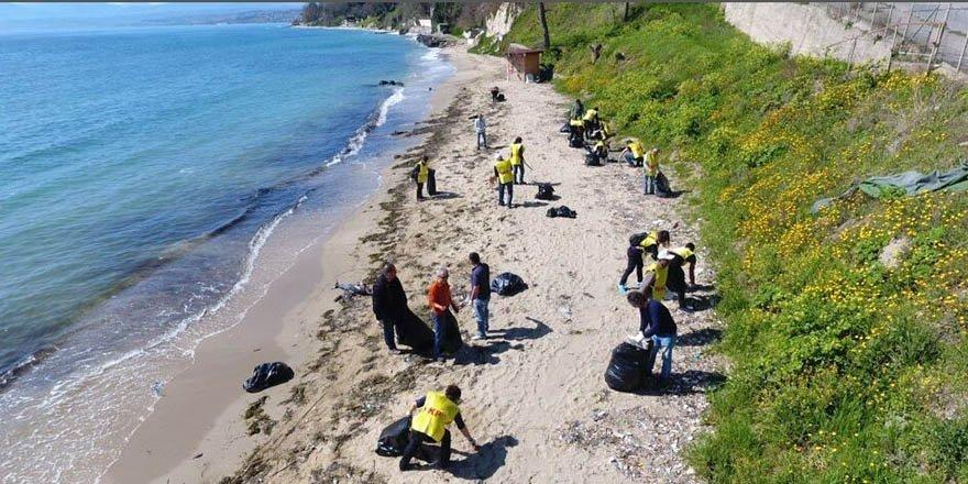 Sinop'ta onlarca yunus ölü olarak kıyıya vurdu