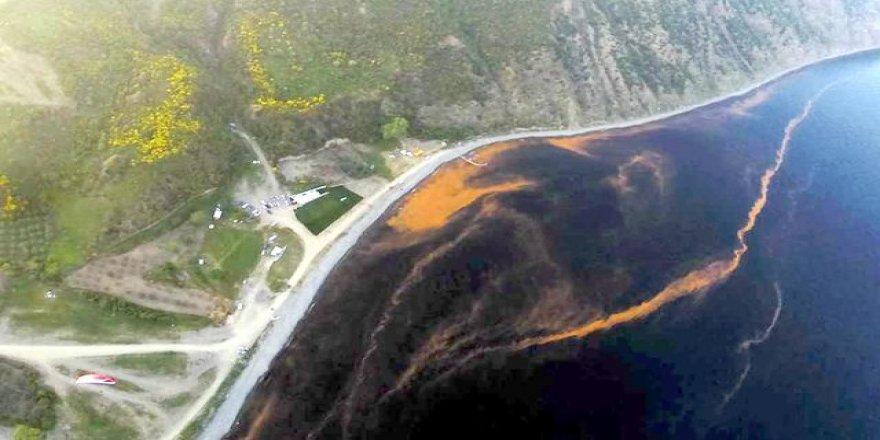 Tekirdağ sahilleri yine renk değiştirdi