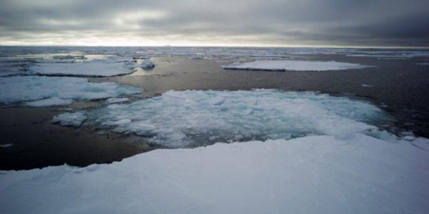 Bering Denizi'ni kaplayan buz eridi