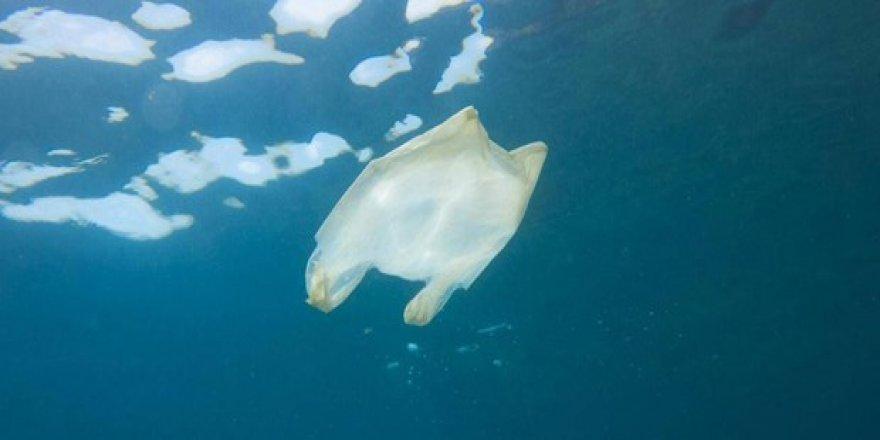 Okyanusların üçte birini koruma altına almak mümkün