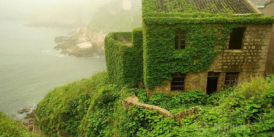 Yeşile boyanmış bir ada: Shengsi