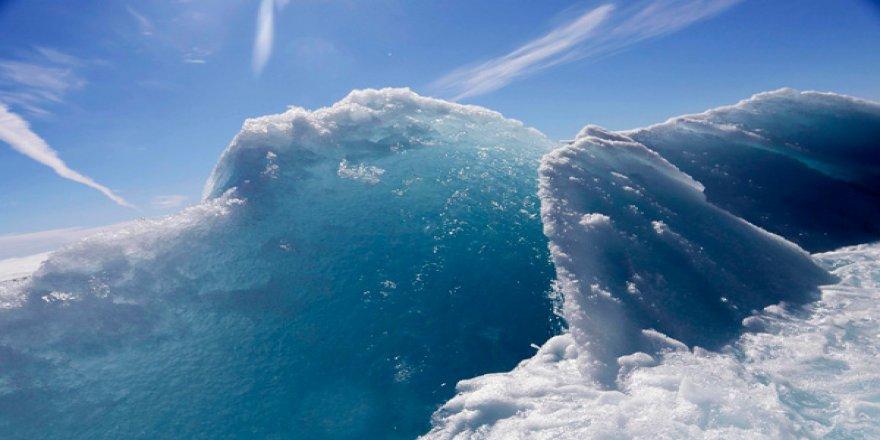 Antarktika'da bile plastik bulundu