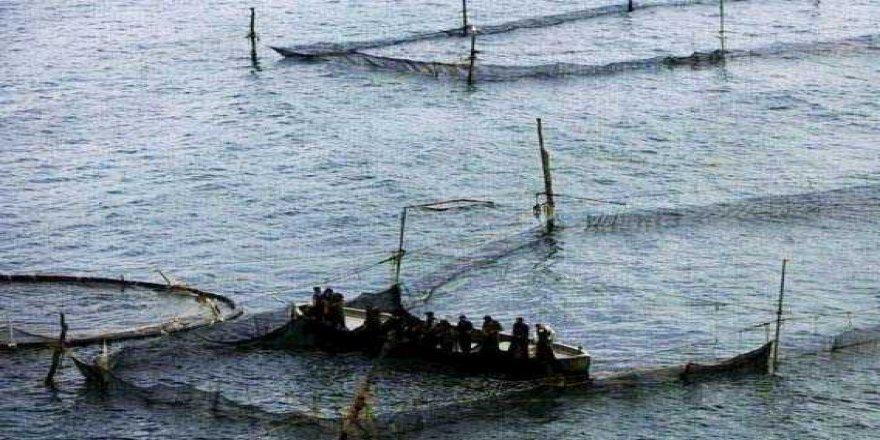 İstanbul Boğazı'ndaki 3 kaçak dalyan kaldırıldı