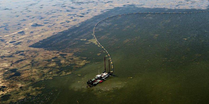 Mogan Gölü 40 yıl sonra eski günlerine dönüyor