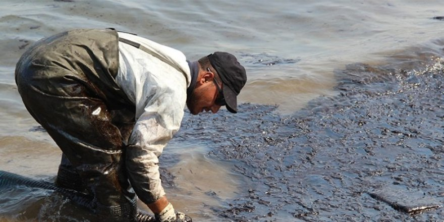 Foça'da petrol temizliği