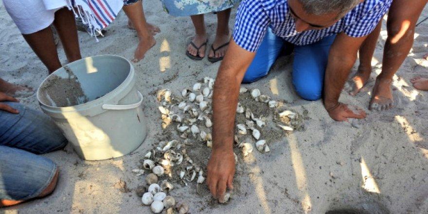 Çeşme'nin ilk carettaları denizle buluştu